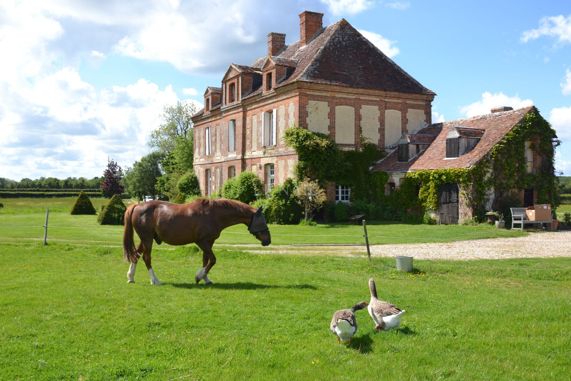 manor house 8 rooms for sale on BERNAY (27300)