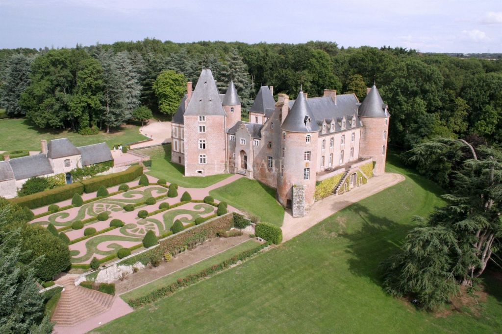 castle 20 rooms for sale on Aubigny sur nere (18700) - See details