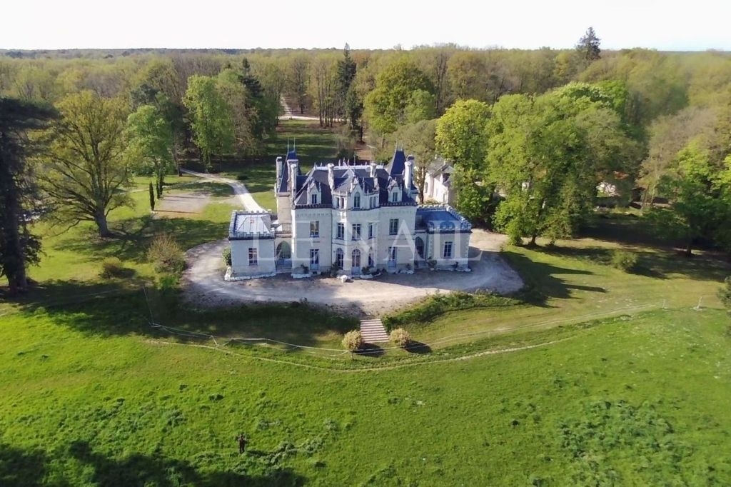castle 20 rooms for sale on Loches (37600) - See details