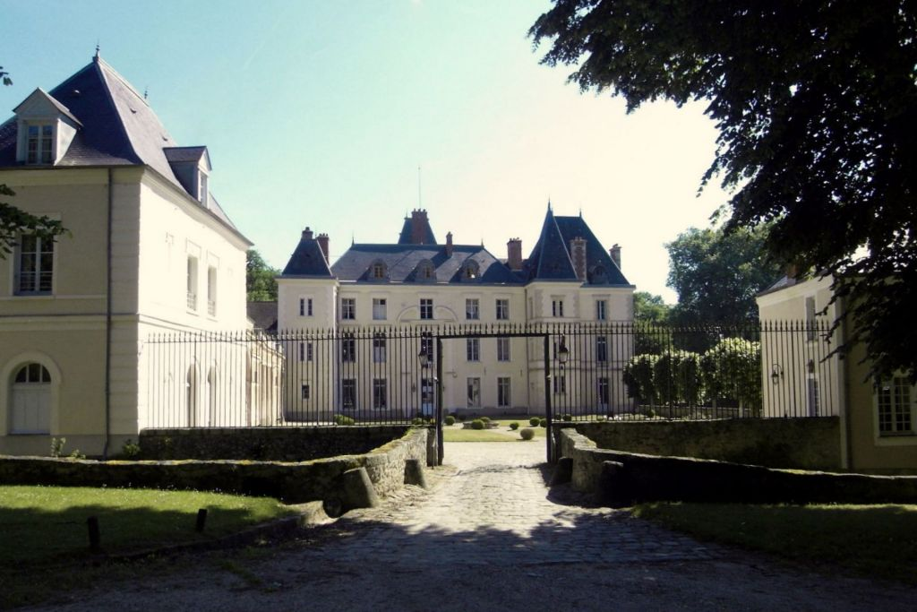 castle 30 rooms for sale on La ferte alais (91590) - See details